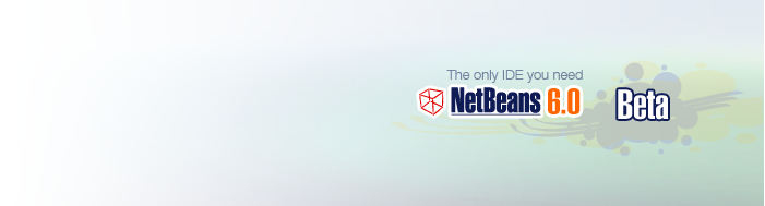 NetBeans 6.0 beta